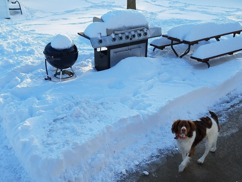 grills snow.jpg