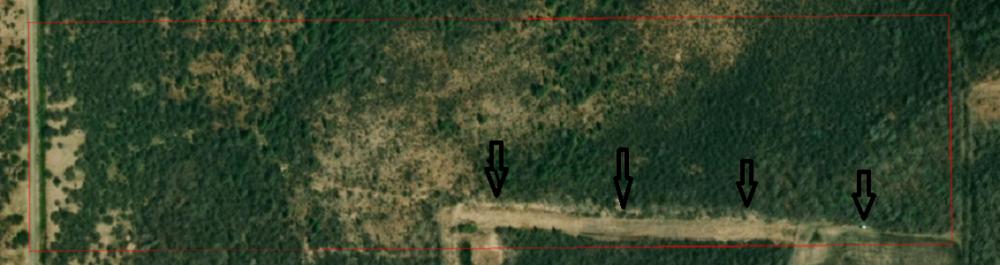 Land.thumb.PNG.ebfbc4874492ac1aef072d51b07c0b0b.PNG