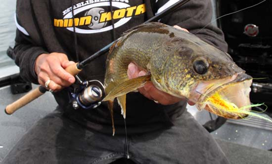 Michigan Fishing Reports