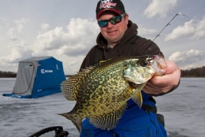 Jason Mitchell holding a panfish while ice fishing. Lure presentation