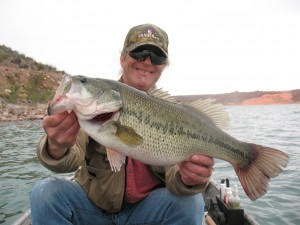 In The Zone For Vertically Stacked Bass By Brett Richardson