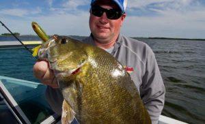 Finding Huge Missouri River Smallmouth Bass