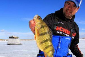 Ice Fishing Perch – Jumbo Perch Talk